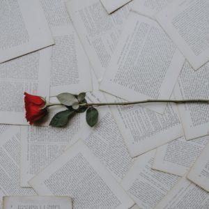 Ne vous occupez pas des épines, cueillez les roses.